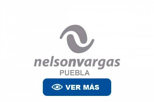 NELSON VARGAS PUEBLA